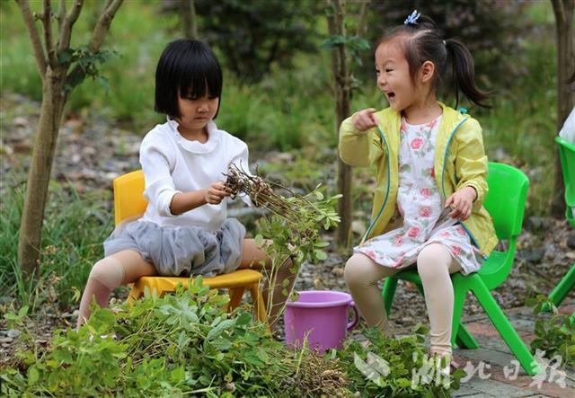 现实版开心农场!竹山一幼儿园设开心农场