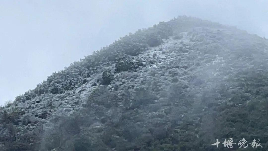下雪啦!十堰今秋首场雪刚刚落下!在这儿……